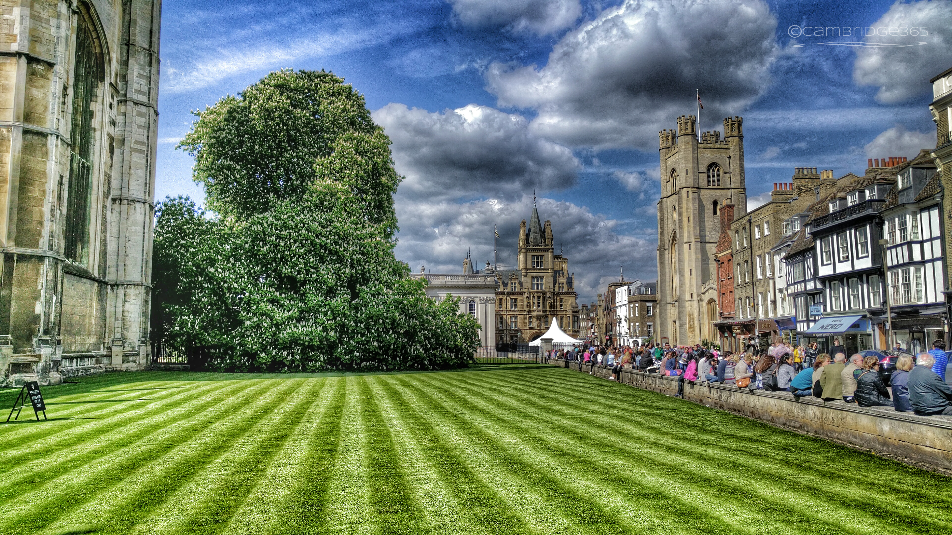 King's parade and the lawn in front of King's college